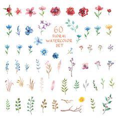 Conjunto de flores acuarela. Diferentes elementos vectoriales. - ilustración de arte vectorial