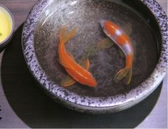 "3D Painting Of Fish In Resin Water inspired by Riusuke Fukahori ""君逑"""