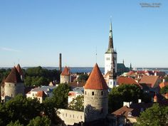 Tallin Estonia    Our cab driver said they HATE Russians.  A Storybook town.  Wonderful