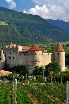 ARCHITECTURE – another great example of beautiful design. Castelbello, Trentino-Alto Adige, Italy
