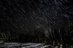 Winter Star Shower Near Spruce Woods in Manitoba Canada  js
