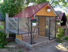 Outdoor Aviary For Finches images
