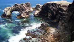 Reserva Nacional San Fernando celebrará su sexto aniversario como área natural | Inforegion
