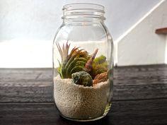 beach terrarium jar - Google Search