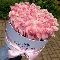 Fresh Cut Roses - Round Box - Standard Colors