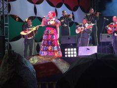 De fiesta en Zacatecas,2013