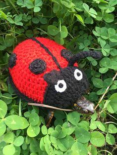 Crochet ladybug by CROCHEThatsBYolga Tortoise As Pets, Cute Tortoise, Tortoise Habitat, Baby Tortoise, Tortoise Care, Tortoise Turtle, Crochet Ladybug, Crochet Turtle, Crochet Cozy