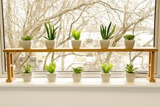 Sink Shelf, Plants Shelf
