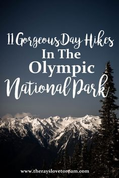11 Stunning Olympic National Park Day Hikes
