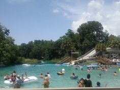 Swim in the natural springs of Weeki Wachee state park.
