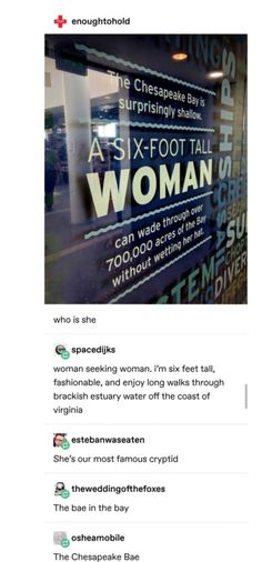 It's funny bc I live in VA close to the Chesapeake Funny Quotes, Funny Memes, Hilarious, Funny Tumblr Posts, Have A Laugh, Puns, I Laughed, Funny Things, Funny Stuff