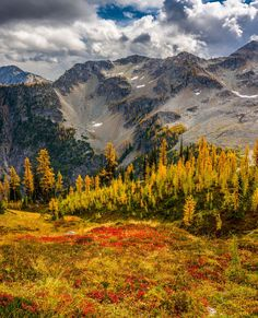 Colour paradise (Rainy Pass Trail, Washington) by Catalin Mitrache on 500px