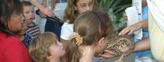 Reptile Ramble Tucson, Arizona  #Kids #Events