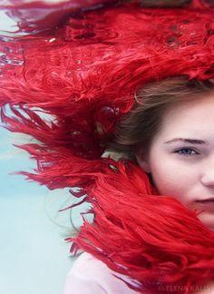 Fotografías acuáticas de Elena Kalis