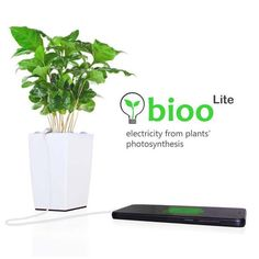 Bioo Lite Plant Pot Charges Your Smartphone with Electricity from Plant's Photosynthesis