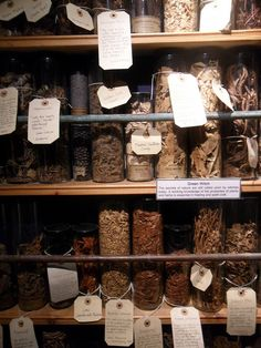 Witches' herbs    at the Witchcraft Museum in Boscastle, Cornwall - tags for the apothecary artifacts.
