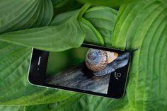 Mobile snail by Erica van der Graaf