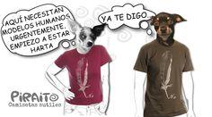 #chihuahua camisetas sutiles - Colecciones - Google+