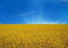 HD wallpaper: images of natures beauty sky, landscape, agriculture Ukrainian Recipes, Ukrainian Art, Nature Hd, Nature Images, Wallpaper Downloads, Hd Wallpaper, Wallpapers, Ukraine Flag, Constitution Day