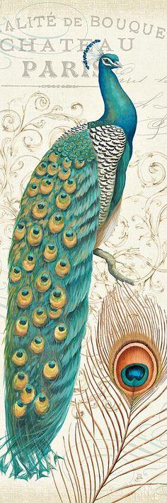 Peacock Vintage Art...A Wild Apple Print