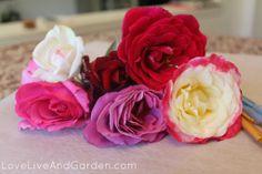 - http://loveliveandgarden.com/tutorial-candied-rose-petals/