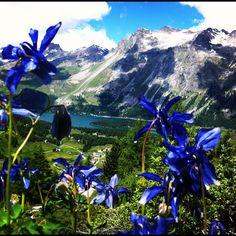 Engadin, Switzerland