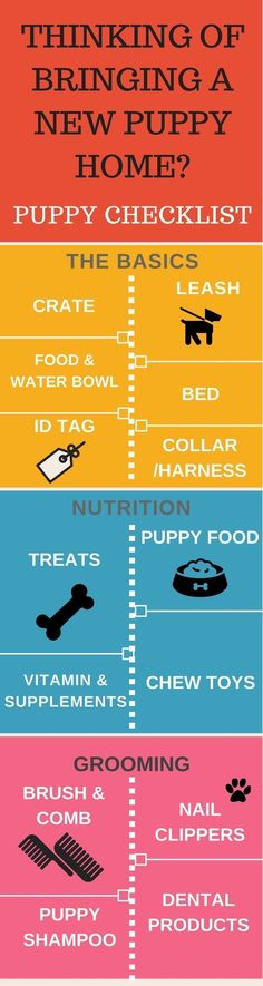 Thinking of bringing a new puppy home? There is a lot to do. Puppy Checklist can your life a lot easier. Puppy Training Tips | Puppy Infographics | Dog Infographics | Puppy Checklist | Crate | Puppy treats | Puppy Food | https://hope-coming.com/ #puppytrainingcratetips