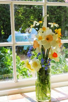 Aiken House & Gardens: The Winners and our Spring Garden!