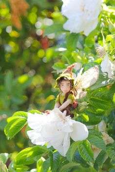 Tisa day for Faerie fun & games(and minglingwith thebees). so and come  play beneath a leafy bower and dance upon the breeze. It's all in honour  of one noble flower,that every Faerie knows, the lordly & majestic Rose.  Listen to thelilting tune of a Faerie bard, and play a game of