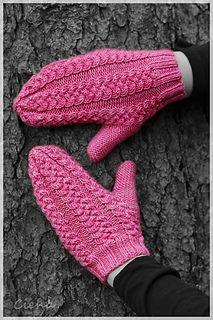 Tress Mittens: http://www.ravelry.com/patterns/library/tress-mittens