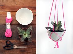 For hanging plants outside instead of nasty plastic pots. how to make a hanging plant out of a bowl, plant, scissors and string. (must click photo on linked page for directions). Diy Hanging, Hanging Plants, Hanging Gardens, Hanging Baskets, Diy And Crafts, Arts And Crafts, Do It Yourself Inspiration, Idee Diy, Cactus Y Suculentas