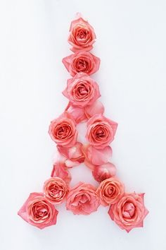 The Eiffel Tower in roses. <3