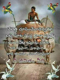 Super Free Life Quotes, Life Lesson Quotes, Motivational Quotes For Life, New Quotes, Meaningful Quotes, Positive Quotes, Love Quotes In Telugu, Telugu Inspirational Quotes, Jokes Images