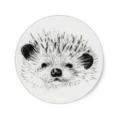Cute Hedgehog drawing Sticker