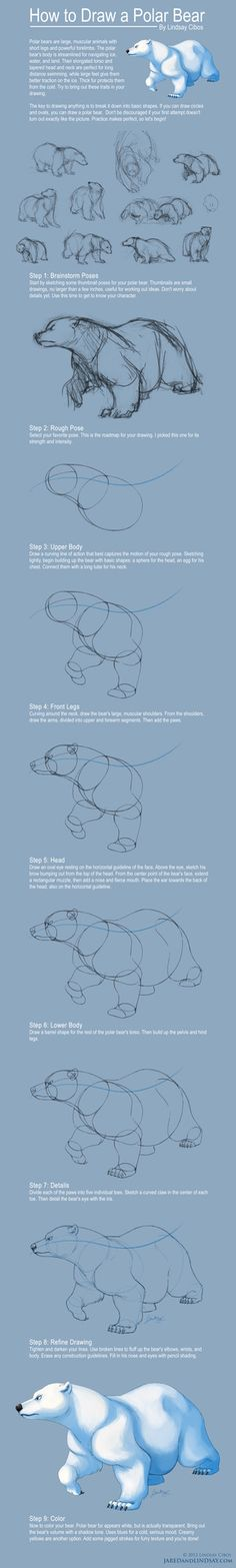 How to Draw a Polar Bear by *LCibos