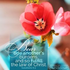 Marriage Advice For Maid Of Honor Speech Key: 8116445367 Prayer Verses, Scripture Verses, Bible Verses Quotes, Bible Scriptures, Galatians 6 2, John Stott, Christ In Me, Jesus Christ, Now Faith Is