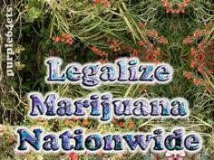 Marijuana Legal in Colorado and Washington. Millions Cheer. eARTh heART...