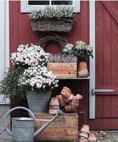 Backyard decor - rustic style Source by dogsista Garden Lighting Trees, Rustic Style, Rustic Decor, Farmhouse Style, Patio, Backyard, Garden Party Decorations, Garden Deco, Most Beautiful Gardens