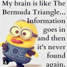 Funny Quotes Minions And Minions Quotes Images. Read amazing these Funny Quotes Minions And Minions Quotes Images . Humor Minion, Funny Minion Memes, Minions Quotes, Funny Jokes, Minion Sayings, Cute Minion Quotes, Funny Insults, Funny School Jokes, Hilarious Quotes