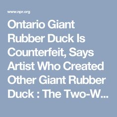 Ontario Giant Rubber Duck Is Counterfeit, Says Artist Who Created Other Giant Rubber Duck : The Two-Way : NPR