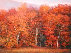 Autumn Woodlands II