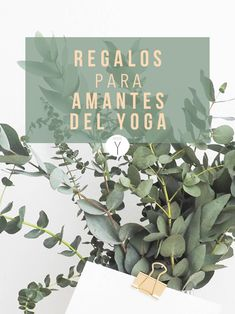 Regalos para personas que hacen yoga | Accesorios de Yoga | Libros de Yoga | Ropa de Yoga | YoguiPrincipiante.com Yoga Sutras, Gym, Lettering, Outfits, Ideas, Shopping, Meditation For Beginners, Yoga Accessories, Yoga Bag