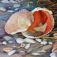 Cockles by Elaine Hahn Original watercolors