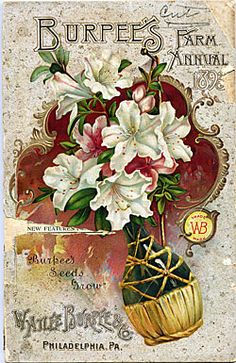 Company Name:  W. Atlee Burpee & Co.    Catalog Title:  Burpee's Farm Annual 1895 (1895)  Publication Information:  Philadelphia, PA  United States  Smithsonian Institution Libraries Catalog Number:  09738