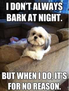 I don't always bark at night, but when I do, it's for no reason Picture Quote #1