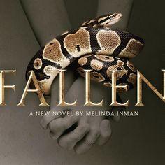 Fallen Novel, God's Grace, Book Review, Spotlight, Promotion, Novels, Product Launch, Blog, Blogging