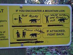 Mountain Lion Advice. I love the throw children part. :P