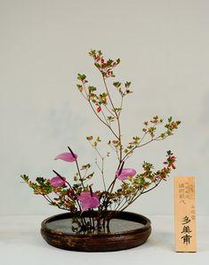 Jeffrey Friedl's Blog » A Few More From the Ikebana Show, 2011