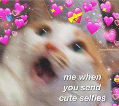 Gf Memes, Stupid Memes, Funny Memes, Cute Love Memes, Funny Love, Sweet Memes, Wholesome Pictures, Memes For Him, Cute Messages