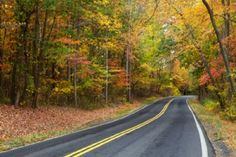 Best Bets: Drives and destinations that celebrate autumn hues. St Louis area